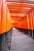 Thousands of vermilion torii gates at Fushimi Inari Taisha Shrine in Kyoto, Japan