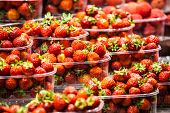 Fresh, Red Strawberries At A Local Farmers Market In Barcelona Spain