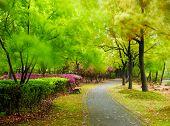 Green city park. Shanghai, China