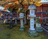 Tamukeyama Hachimangu shrine  in Nara autumn