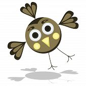 Funny Cartoon Bird Vector Illustration