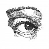 Eye. Realistic vector illustration. Hand drawn. Eps8