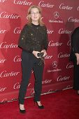 PALM SPRINGS - JAN 4:  Meryl Streep at the Palm Springs Film Festival Gala at Palm Springs Conventio