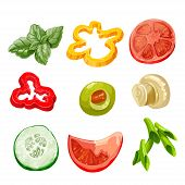 Food ingredients Series 2 - bell pepper, olive, basil, marinated