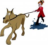 image of dog-walker  - Illustration of old lady trying to walk with big dog on the puddle - JPG