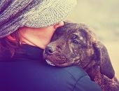 foto of bull-mastiff  - a girl holding a pit bull mix puppy done with a retro vintage instagram filter - JPG