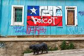 Chilean Flag Graffiti