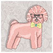 Hipster bichon with glasses and bowtie. Cute puppy illustration for children and kids. Dog backgroun