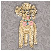 Hipster poodle with glasses and bowtie. Cute puppy illustration for children and kids. Dog backgroun