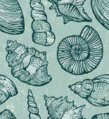Sea shell seamless background.