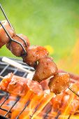 stock photo of barbie  - Delicious grilled chicken skewers on fire - JPG