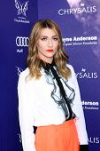LOS ANGELES - JUN 7:  Amy Renee Heidemann, Karmin at the 13th Annual Chrysalis Butterfly Ball at Pri