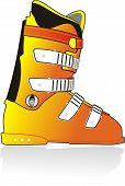 Ski sports color boot