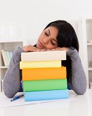 Young Woman Sleeping While Studying