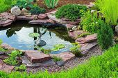 stock photo of ponds  - Pond in landscape design - JPG