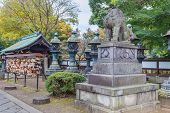 Stone lion at Toshogu Shrine at Ueno Park in Tokyo