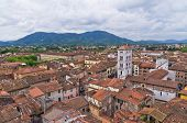 Cityscape over the roofs of Lucca, Tuscany