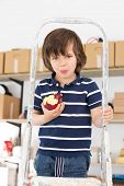 Cute, adorable boy eating apple on a stepladder
