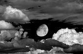 Gibous Moon