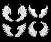 Set Of White Wings