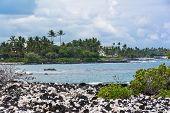 The black and white beach, Maui