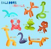 image of bird-dog  - Balloon animals set with dog crab snake bird isolated vector illustration - JPG
