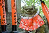 Stone lion statue in front of Torii