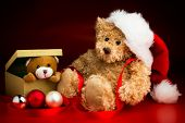 Teddy Bear Wearing A Christmas Hat And A Toy Bear Peeking Out Of A Box
