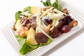 Traditional Waldorf Salad closeup.