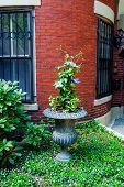 Urban Garden, Boston MA