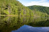 Calm summer river
