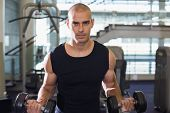 Portrait of a young muscular man exercising with dumbbells in the gym