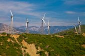 Electrical Windmills In Southern Spain
