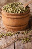 Green Mung Bean In Wooden Bowl Closeup. Vertical