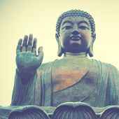stock photo of budha  - Giant Buddha in Hong Kong - JPG