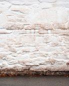 stucco white wall in autumn