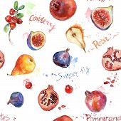 picture of pomegranate  - Set of fig - JPG