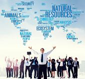 image of environmental conservation  - Natural Resources Conservation Environmental Ecology Concept - JPG
