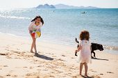 picture of babysitter  - Happy young mother having some fun with a ball with her little daughter and her dog at the beach - JPG