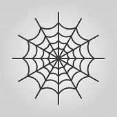 picture of spiderwebs  - The spiderweb icon - JPG