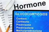 picture of hormones  - Papers with hormones list and tablet  with words  glucocorticoids - JPG