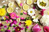 stock photo of yellow buds  - Cup of herbal tea with beautiful flowers - JPG