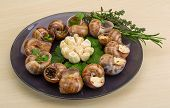 picture of escargot  - Escargot with rosemary thyme garlik and melissa - JPG