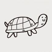 image of tortoise  - Doodle Tortoise - JPG