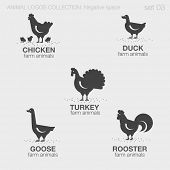 picture of roosters  - Farm Animals Logos negative space style design vector templates. Chicken, Duck, Turkey, Goose, Rooster silhouettes logotype concept icons set. - JPG