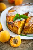 picture of sponge-cake  - Sponge cake with apricot and powdered sugar - JPG