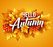 Autumn typographic. Fall leaf. Vector illustration poster