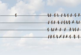 stock photo of pigeon  - Individuality symbol and independent thinker concept and new leadership concept or individuality as a group of pigeon birds on a wire with one individual bird in the opposite direction as a business icon for new innovative thinking - JPG
