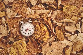 foto of pass-time  - Vintage alarm clock in dry autumn leaves Passing of time and season change concept - JPG
