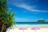 Mangroove Beach